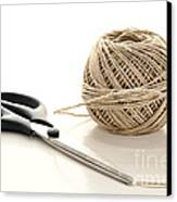 Scissors And Twine Canvas Print by Olivier Le Queinec
