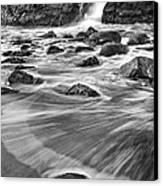 Sea Fan Canvas Print by Michele Steffey