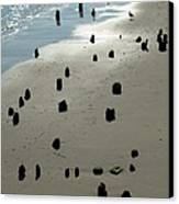 Sea Piles Canvas Print by Deborah  Crew-Johnson