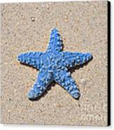 Sea Star - Light Blue Canvas Print by Al Powell Photography USA