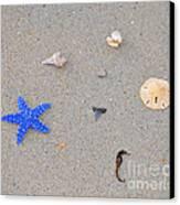 Sea Swag - Dark Blue Canvas Print by Al Powell Photography USA