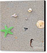 Sea Swag - Green Canvas Print by Al Powell Photography USA