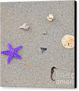 Sea Swag - Purple Canvas Print by Al Powell Photography USA