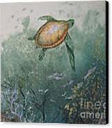 Sea Turtle Canvas Print by Nancy Gorr