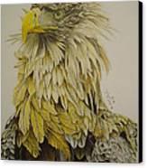 Seaeagel Canvas Print by Per-erik Sjogren
