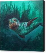Seal Canvas Print by Kathleen Kelly Thompson