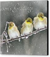 Season's Greetings Canvas Print by Lori Deiter