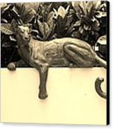 Sepia Cat Canvas Print by Rob Hans