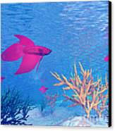 Several Red Betta Fish Swimming Canvas Print by Elena Duvernay