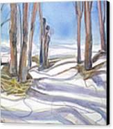 Shadowplay Canvas Print by Grace Keown