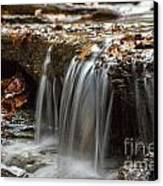 Shale Creek In Autumn Canvas Print by Darleen Stry