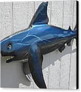 Shark Blue Bull Shark Canvas Print by Robert Blackwell