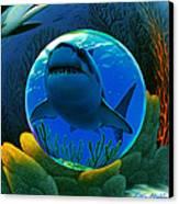 Shark World  Canvas Print by Robin Moline