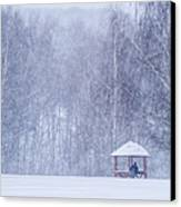 Shelter In The Storm - Featured 3 Canvas Print by Alexander Senin