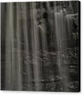 Shower Curtain Drapes Bear Roar Canvas Print by Mark Serfass