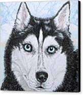 Siberian Husky Canvas Print by Yvonne Johnstone