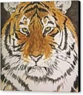 Siberian Tiger Canvas Print by Regan J Smith