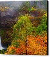 Silver Falls Pano Canvas Print by Darren  White