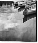 Silver Fish IIi Canvas Print by Jon Glaser