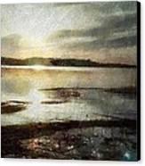 Silver Morning Canvas Print by Gun Legler