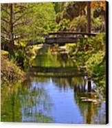Silver Springs Florida Canvas Print by Christine Till