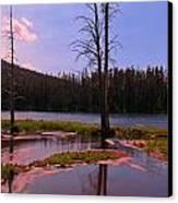 Simple Beauty Of Yellowstone Canvas Print by John Malone