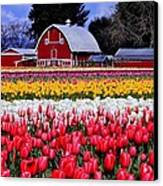 Skagit Valley Canvas Print by Benjamin Yeager