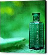 Small Green Poison Bottle Canvas Print by Rebecca Sherman