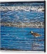 Small Waves Canvas Print by Perry Webster