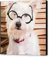 Smart Doggie Canvas Print by Edward Fielding