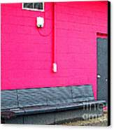 Smokin' Out The Back Door Canvas Print by MJ Olsen