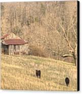 Smoky Mountain Barn 8 Canvas Print by Douglas Barnett