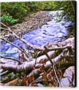 Smoky Mountain Stream Two Canvas Print by Frozen in Time Fine Art Photography
