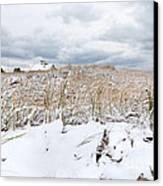 Smuggler's Beach Snow Cape Cod Canvas Print by Michelle Wiarda