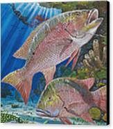 Snapper Spear Canvas Print by Carey Chen