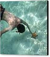 Snorkeller Touching Starfish On Seabed Canvas Print by Sami Sarkis