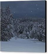 Snow Falling In A Forest Canvas Print by Ulrich Kunst And Bettina Scheidulin