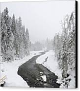 Snow Landscape - Trees And River In Winter Canvas Print by Matthias Hauser