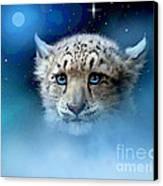 Snow Leopard Cub Canvas Print by Robert Foster