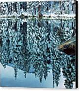 Snow Mirror Canvas Print by Eric Glaser
