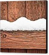 Snow On Fence Canvas Print by Tom Gowanlock