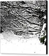 Snow Scene 5 Canvas Print by Patrick J Murphy