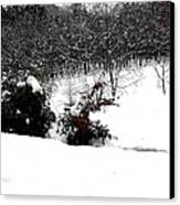 Snow Scene 6 Canvas Print by Patrick J Murphy