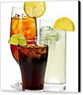 Soft Drinks Canvas Print by Elena Elisseeva