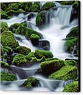 Sol Duc Canvas Print by Ginny Barklow