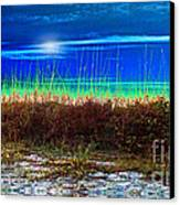 Solar Sky Canvas Print by Laurel D Rund