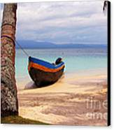 Solo Canvas Print by Bob Hislop