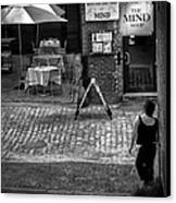 Something For Your Mind Canvas Print by Bob Orsillo