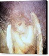 Sometimes The Angels Shiver Canvas Print by Gun Legler
