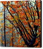Song Of Autumn Canvas Print by Karen Wiles